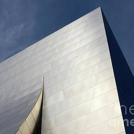 Bob Christopher - Walt Disney Concert Hall 5