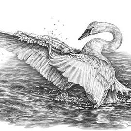 White Swan - Dreams Take Flight by Kelli Swan
