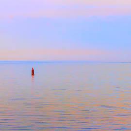 Bill Tiepelman - Wide Open Solitude
