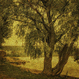 Willow at the Lake. Golden Green Series by Jenny Rainbow