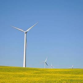 Evelina Popilian - Wind Power