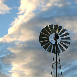 Nadine Mot Mitchell - Windmill