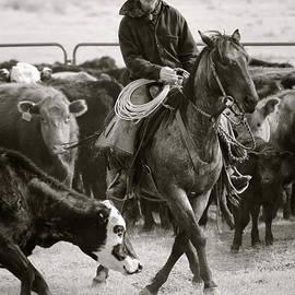 Wine Cup Cowboy by Diane Bohna