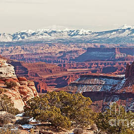 Winter in Canyonlands by Bob and Nancy Kendrick