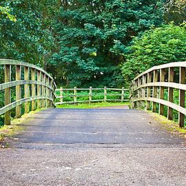Tom Gowanlock - Wooden footbridge