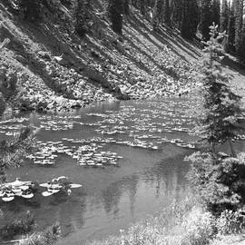 Shawn Hughes - Yellowstone in Black and White