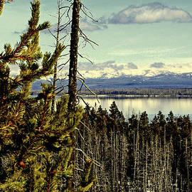 Yellowstone Lake by Lynn Bawden