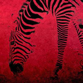 Aimelle  - Zebra on Red