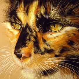 American Art Awards Winner 2015 Tortoiseshell Cat by Danguole Serstinskaja