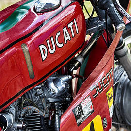 Racing Ducati  by Tim Gainey