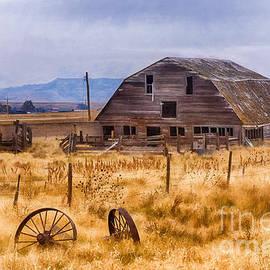 Priscilla Burgers - A Deserted Nebraska Farm