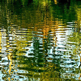 Reflections and Patterns in Nature by Carol F Austin