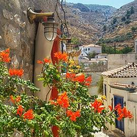Nadia Seme - Along the path in Hydra Greece