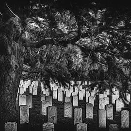 Arlington  by Erika Fawcett
