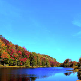 Autumn At The Pond by David Patterson