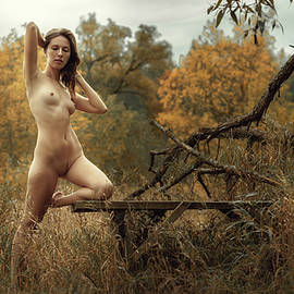 Autumn by Dmitry Laudin