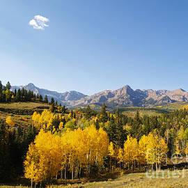 Alex Cassels - Autumn in the Sneffels Range