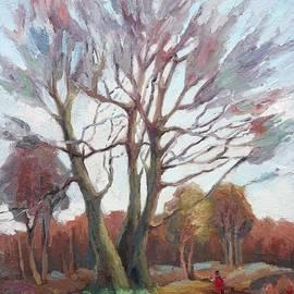 Anna Shurakova - Autumn landscape