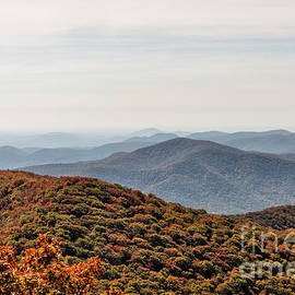 Vizual Studio - Autumn Landscape View from Brasstown Bald Mountain in Georgia