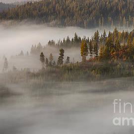 Idaho Scenic Images Linda Lantzy - Autumn Mists