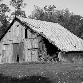 Barn in Indiana no 10 by Dwight Cook
