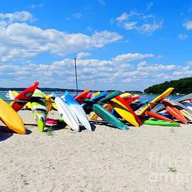 Ed Weidman - Beach Beauty