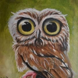 Big Eye Owl by Marta Kazmierska