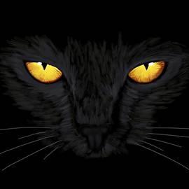 Superstitious Cat by Anastasiya Malakhova