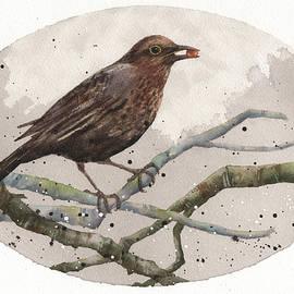 Blackbird Painting - Alison Fennell