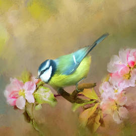 Blue Tit by Robert Murray