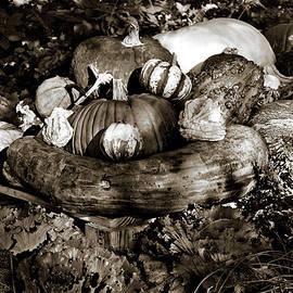 Tim Jensen - Bountiful Harvest - Sepia #2