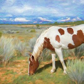 Anita Hubbard - Bryce Canyon Morning