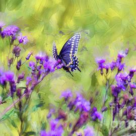 Kerri Farley - Butterfly Beauty
