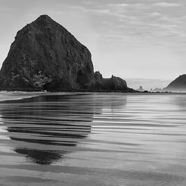 Bob Neiman - Cannon Beach 6211