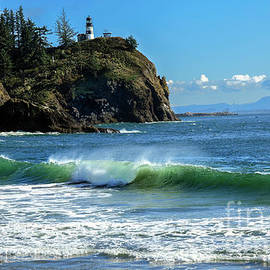 Cape Disappointment by Robert Bales