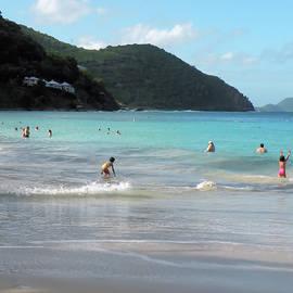 Caribbean Beach Scenic by Rosalie Scanlon