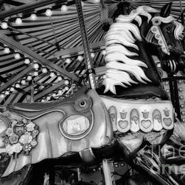 Bob Christopher - Carousel Beauty Salem Oregon 10