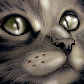 Cat face by Antonio Ivens