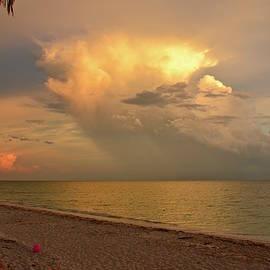 Carol Bradley - Clouds