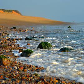 Coastal Serenity by Dianne Cowen
