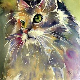 Kovacs Anna Brigitta - Cute cat
