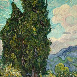 Vincent Van Gogh - Cypresses, 1889