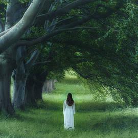 dark forest - Joana Kruse