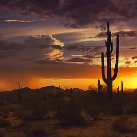 Dreamy Desert Skies  by Saija  Lehtonen
