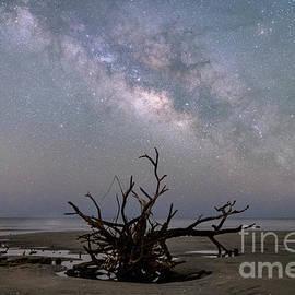 Robert Loe - Edisto Island Milky Way