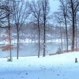 Barry Jones - Falling Snow - Winter Landscape