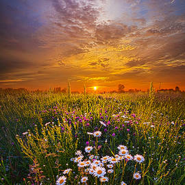 Phil Koch - Father