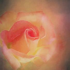Terry Davis - First Bloom
