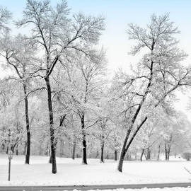 First Snow by Kay Novy