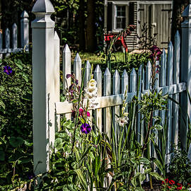 Black Brook Photography - Flowery Fence